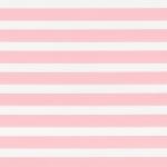ткань зебра 056-0010