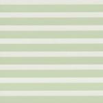 ткань зебра 058-62