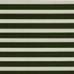 ткань зебра 058-67