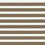 ткань зебра 059-93