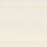 ткань зебра 063-31