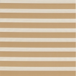 ткань зебра 063-37
