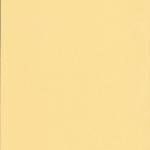 105-blackout-светло-желтый