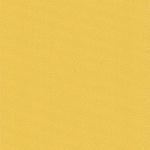 207-blackout-жёлтый